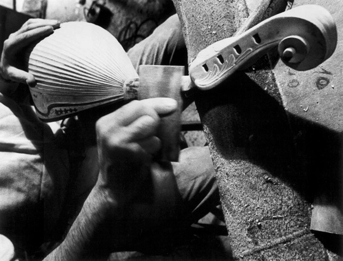 Mandolini: Stefano Cardone Photographer Reportage